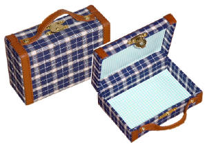 Suitcase in blue plaid